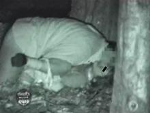 野外で偶然目撃したレイプ現場を盗撮 個人撮影のリアルな臨場感